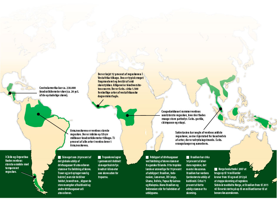 Kort Over Verdens Regnskove